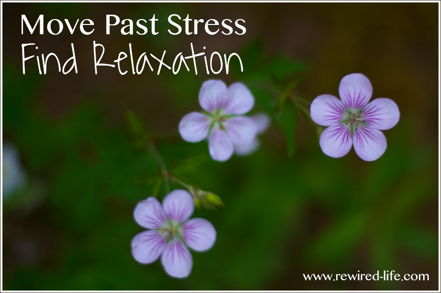 Moving from Stress to Relaxation